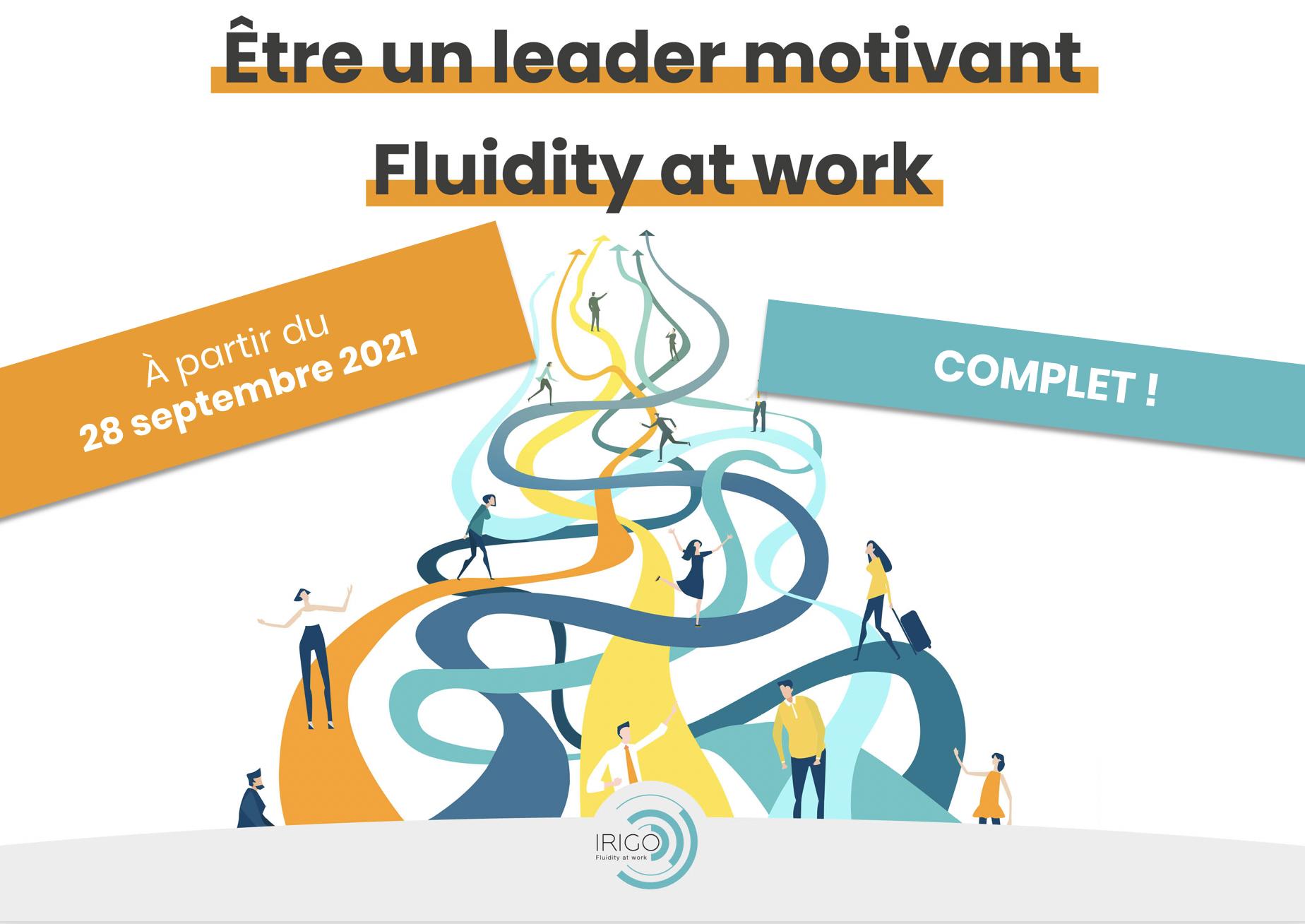 Être un leader motivant, Fluidity at work